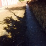 Karli Köyü Cemevi